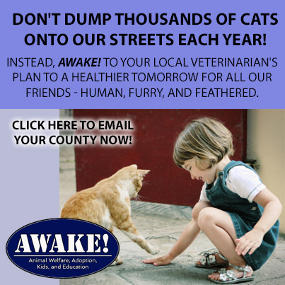 Please Don't Dump Thousands of Cats onto our Streets
