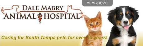 Dale Mabry Animal Hospital