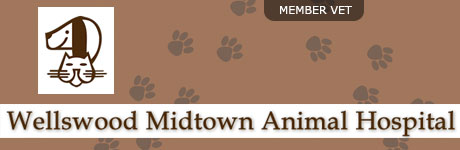Wellswood Midtown Animal Hospital
